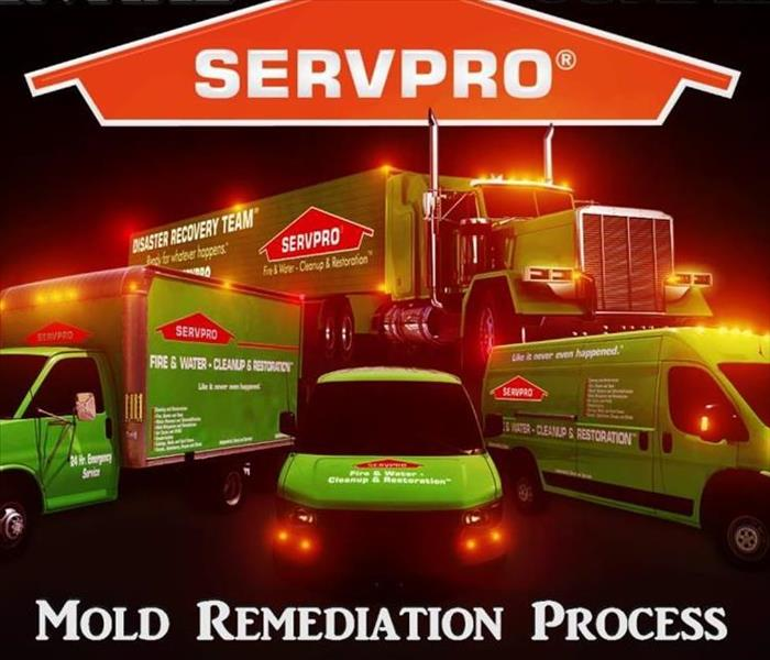 Mold Remediation Mold Remediation Process