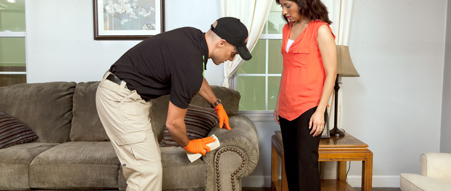 Raytown, MO carpet upholstery cleaning